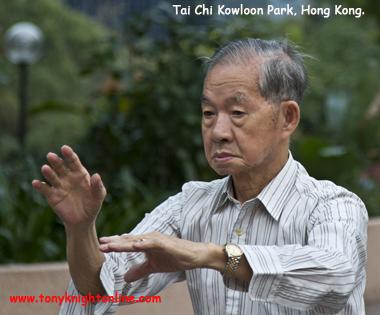 151123-web-t-kowloon-park-hk-tai-chi-img_0559