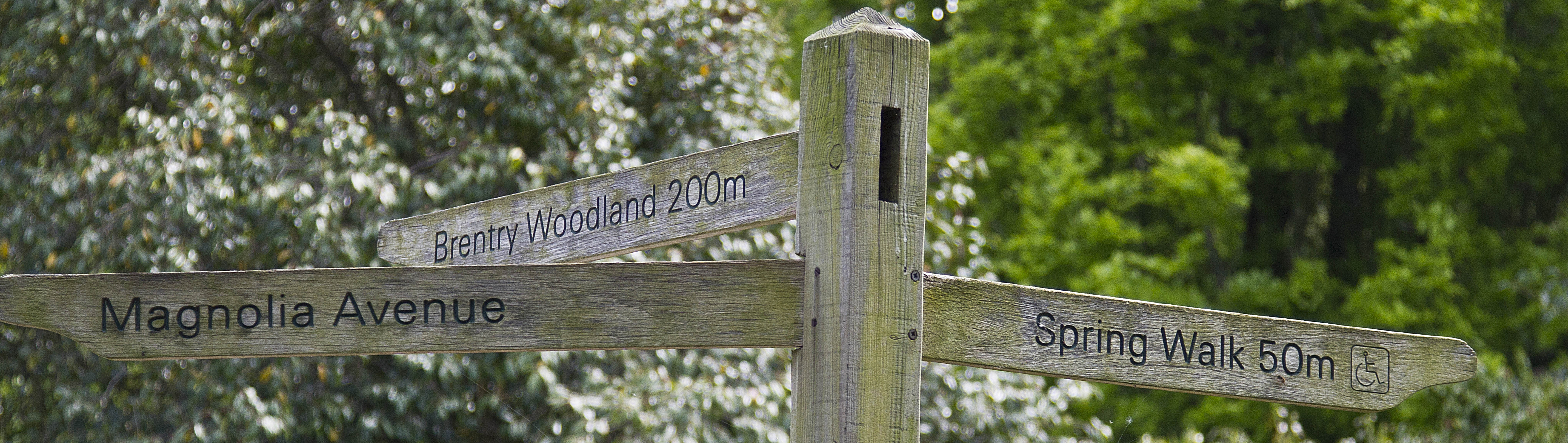 The Gardens are well sign-posted and supplemented with ' current Interest ' signs