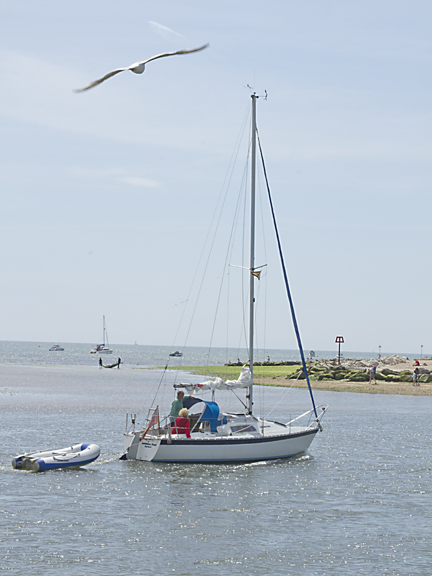 Sailing and Seaguls at Mudeford Quay.