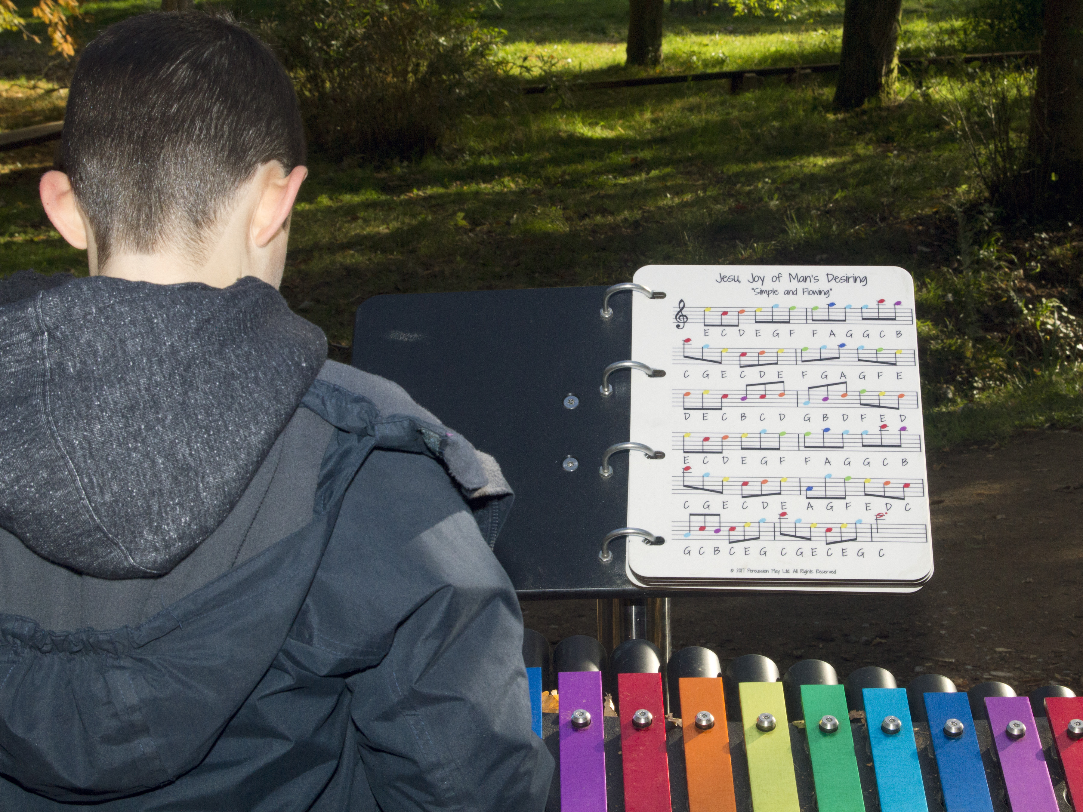 Making music in the Sir Harold Hillier gardens in Autumn.