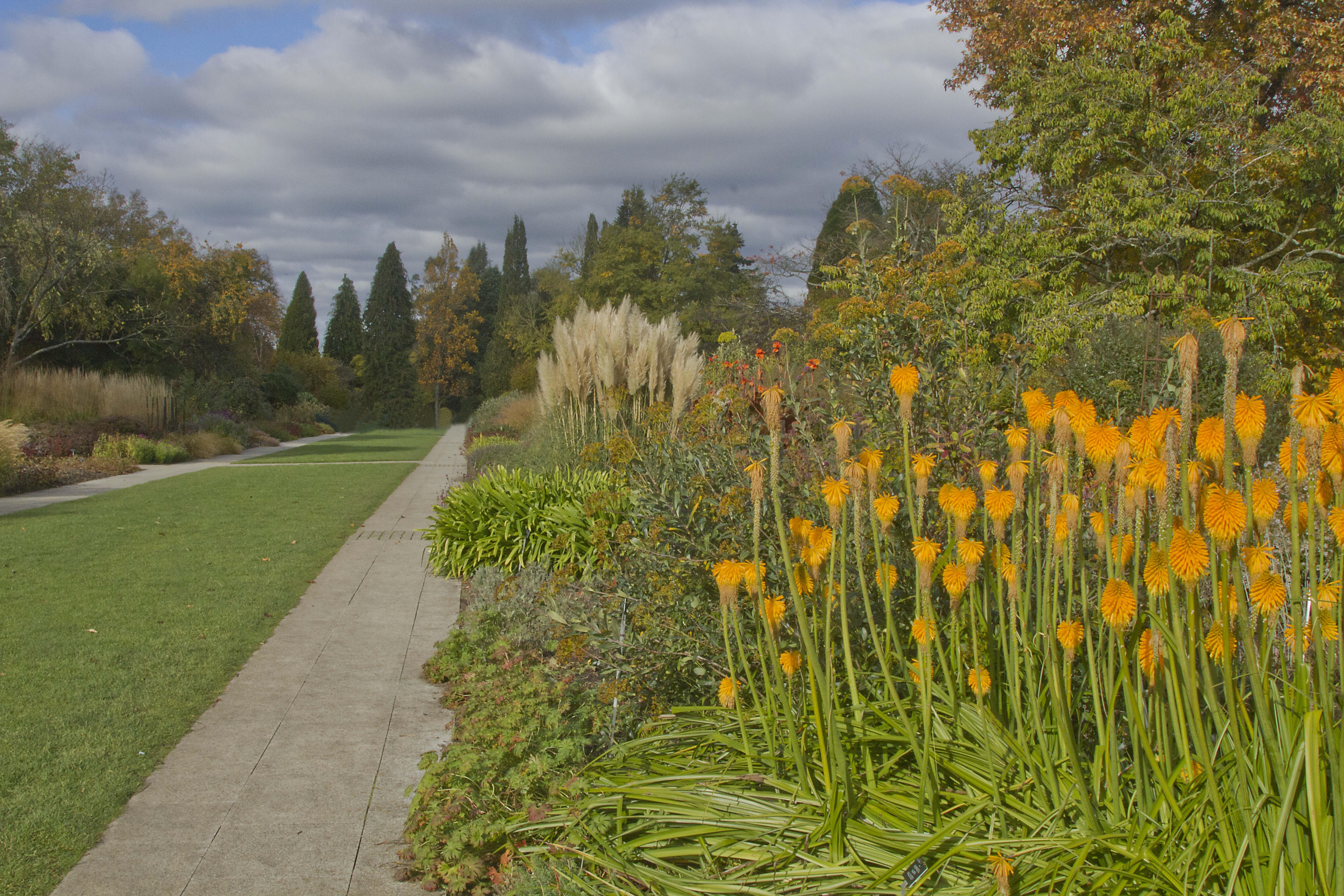 The Centenary Border, Sir Harold Hillier Gardens in Autumn.